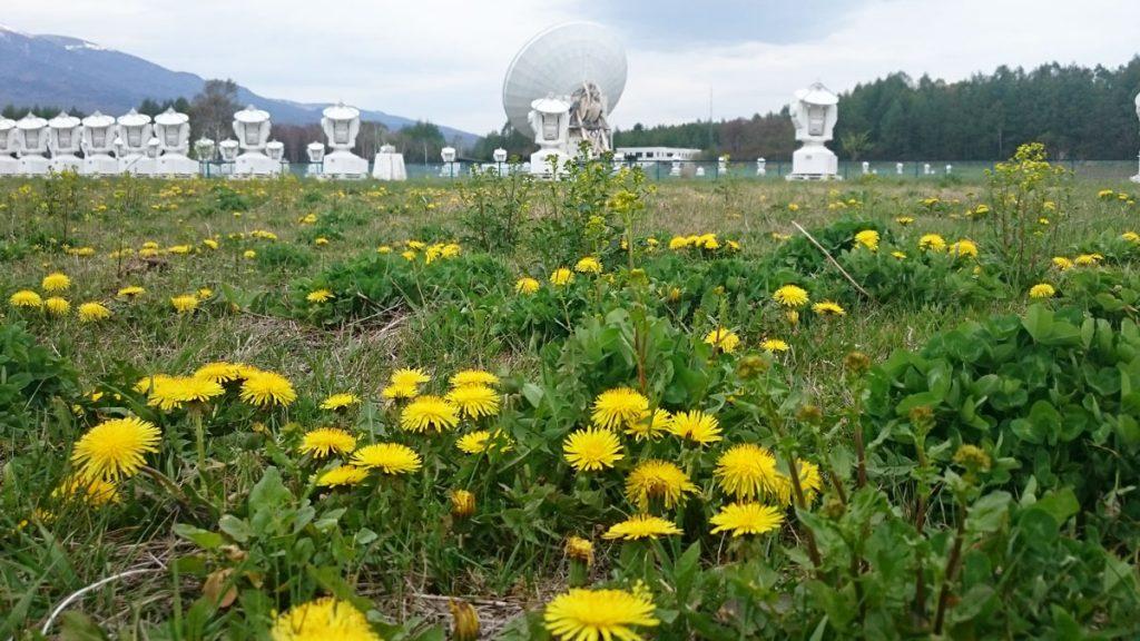 野辺山宇宙電波観測所