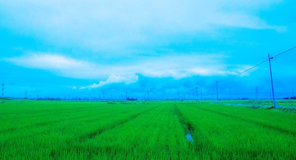 雲が近づく鹿島臨海工業地帯