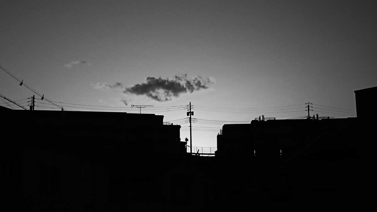 初夏 夕方の明暗
