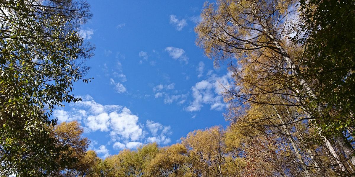 11月 山の空|リキラボタイムス