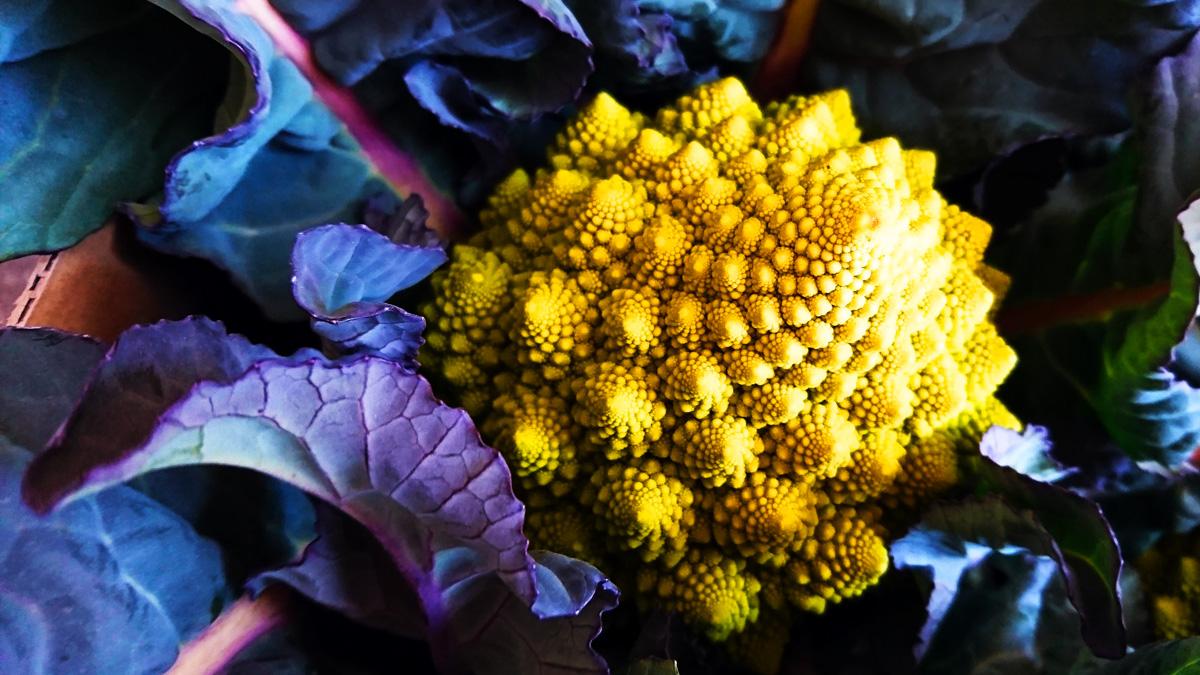 黄色いぐるぐる|リキマルラボ