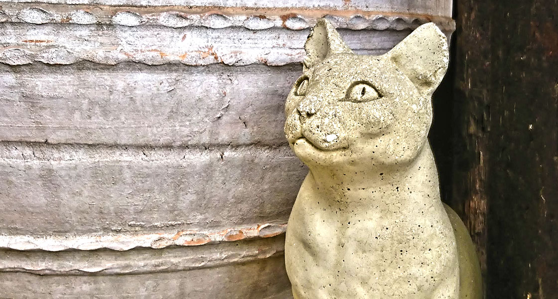 ある日の猫|リキマルラボ
