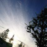 シルエット|リキマルラボ